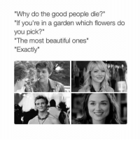 """Beautiful, Omg, and Flower: """"Why do the good people die?""""  """"If you're in a garden which flowers do  you pick?""""  """"The most beautiful ones""""  Exactly OMG FINNICK IM JDKDODLSLSO"""