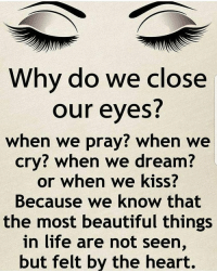 Beautiful, Life, and Memes: Why do we clos  our eyes?  when we pray? when we  cry? when we dream?  or when we kiss?  Because we know that  the most beautiful things  in life are not seen,  but felt by the heart. https://t.co/uznZgCTUkx