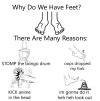 Anime, Dank, and Head: Why Do We Have Feet?  There Are Many Reasons:  oops dropped  my fork  STOMP the bongo drum  KICK anime  in the head  im gonna do it  heh heh look out