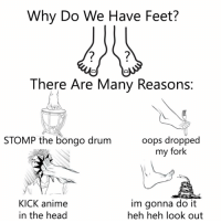 Anime, Head, and Feet: Why Do We Have Feet?  There Are Many Reasons:  STOMP the bongo drum  oops dropped  my fork  KICK anime  in the head  im gonna do it  heh heh look out It is not for Foontball https://t.co/Qsicpuakca