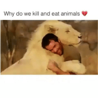 Animals, Life, and Love: Why do we kill and eat animals @Regrann from @inajordanart - Love this video! @Regrann from @rhino1818 - @Regrann from @a_lallie - Love this video 💕 Thank you @hotvocals for making this. _ The comments on the video are horrendous though. Thousands of people saying because they taste good (even though no taste in the world is worth the suffering of another), animals were put here for us to kill and eat (even though animals roamed the Earth for millions of years before humans even existed and the people saying this have never killed an animal themselves and would never be able to), plants have feelings (even though plants don't have a central nervous system so it's simply not comparable), lions eat meat (even though for lions it's a survival instinct whereas for us it's a decision so we can choose compassion), it's the natural circle of life (even though factory farms and slaughterhouses can only be described as the unnatural manmade circle of death) etc. All the usual illogical excuses that can be easily refuted as I've just done. _ ChooseCompassion BeKindToAnimals PeaceBeginsOnYourPlate and in your heart 💚🌱 . _ Caption @a_lallie Video Repost @hotvocals who wrote: They have feelings too - regrann