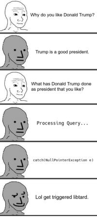 Just about every Trump supporter I know has definitely articulated reasons why they like him but please go on proving that the left can't meme for shit.: Why do you like Donald Trump?  C-  Trump is a good president.  What has Donald Trump done  .as president that you like?  Processing Query...  catch(NullPointerException e)  Lol get triggered libtard. Just about every Trump supporter I know has definitely articulated reasons why they like him but please go on proving that the left can't meme for shit.