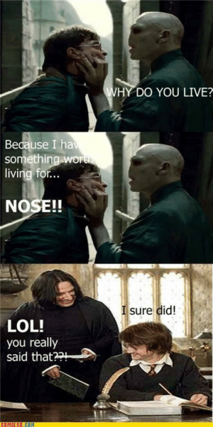 Harry Potter memes are something else: WHY DO YOU LIVE?  Because I hav  something wo  living for..  NOSE!!  I sure did!  LOL!  you really  said that??  COMIXED.COM Harry Potter memes are something else