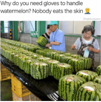 Dank, Fresh, and Memes: Why do you need gloves to handle  watermelon? Nobody eats the skin  @highfiveexpert @highfiveexpert has fresh dank memes