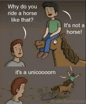 Your horse here!: Why do you  ride a horse  like that?  It's not a  horse!  it's a unicoooorn  fb.com/fuunnyzone Your horse here!