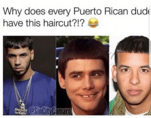 Ayo, Lemme get that Caeser.: Why does every Puerto Rican dud  have this haircut?!? Ayo, Lemme get that Caeser.