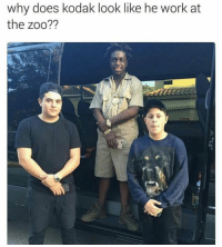 He needs to go back 😂😂😂😂: why does kodak look like he work at  the zoo?? He needs to go back 😂😂😂😂