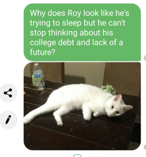 College, Future, and Sleep: Why does Roy look like he's  trying to sleep but he can't  stop thinking about his  college debt and lack of a  future? Meirl