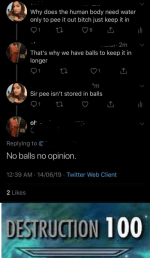 Bitch, Twitter, and Water: Why does the human body need water  only to pee it out bitch just keep it in  6  2m  That's why  longer  we have balls to keep it in  1  m  Sir pee isn't stored in balls  oh  Replying to  No balls no opinion.  12:39 AM 14/06/19 Twitter Web Client  2 Likes  DESTRUCTION 100 Mods gay