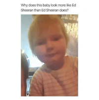 follow my backup @281.9: Why does this baby look more like Ed  Sheeran than Ed Sheeran does? follow my backup @281.9