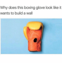 Boxing, Funny, and Memes: Why does this boxing glove look like it  wants to build a wall 58 Relatable Memes That Are Just Too Damn Funny