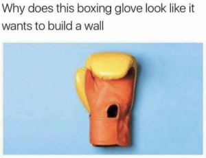 Boxing, Build A, and Why: Why does this boxing glove look like it  wants to build a wall