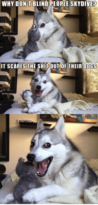 Bad, Bad Jokes, and Dogs: WHY DONT BLIND PEOPLE SKY DIVE?  T SCARES THE SHIT OUT OF THEIR DOGS Bad Joke of the Day!