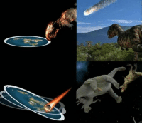 Why don't sciencetists tell the REAL story about how dinosaurs went extinct?!?: Why don't sciencetists tell the REAL story about how dinosaurs went extinct?!?