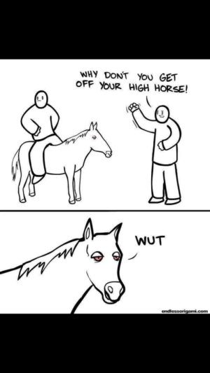 Meirl: WHY DONT You GET  OFF YOUR HIGH HORSE!  WUT  endlessorigami.com Meirl