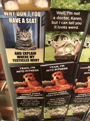 Quirky airport memes!: WHY DON'T YOU  HAVE A SEAT  Well, I'm not  a doctor, Karen,  but I can tell you  it looks weird.  AND EXPLAIN  WHERE MY  TESTICLES WENT  YEAH, I'M  YEAH, I'M  INTO FITNESS  INTO FITNESS  Y  INTO  FITNESS WHOLE  FITNESS WHOLE  PIZZA IN MY M OUTH  PIZZA IN MY MOUTH  FITNESS WH  PIZZA INN MY M  Well, I'm not  a doctor, Karen,  but I can tell y ou  it looks weird.  Well, I'm not  a doctor, Karen,  but I can tell you  it looks weird.  a doctor, Karer  but I can tell yoC  it looks weird.  Contrary to  popular belief.  E shits are really Quirky airport memes!
