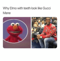 @spartaaaaaaaaa this just took me the fuck out 😭😭😭😭😭😭 someone please send the ambalampse 🚑 dmfiles shepost♻♻: Why Elmo with teeth look like Gucci  Mane @spartaaaaaaaaa this just took me the fuck out 😭😭😭😭😭😭 someone please send the ambalampse 🚑 dmfiles shepost♻♻