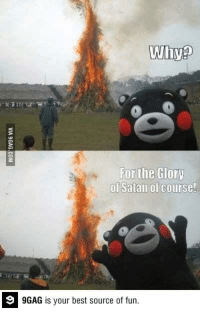 My favorite picture on the internet..