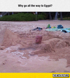 Too Much, Tumblr, and Blog: Why go all the way to Egypt?  THE META PICTURE lolzandtrollz:  Too Much Nose