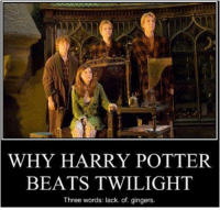 I don't hate Twilight, but this makes me laugh everytime. And bloody it's right too!: WHY HARRY POTTER.  BEATS TWILIGHT  Three words: lack. of. gingers. I don't hate Twilight, but this makes me laugh everytime. And bloody it's right too!