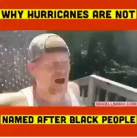 Who mans is this?: WHY HURRICANES ARE NOT  OHHELLNGNH.COM  NAMED AFTER BLACK PEOPLE Who mans is this?