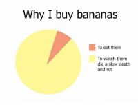 Memes, Death, and Watch: Why I buy bananas  To eat them  To watch them  die a slow death  and rot 🍌🍌