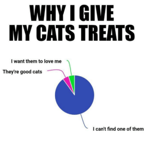 Cats, Love, and Memes: WHY I GIVE  MY CATS TREATS  I want them to love me  They're good cats  I can't find one of them
