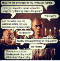 Memes, Shit, and The Rock: Why I'm not advancing in my technique master?  Have you seen the sunset when the  seagulls fly flaming across the plain?  Yes master  And the water from the  waterfall hitting the rock  without achieving anything?  Yes master  And the moon reflecting on calm water?  Yes master  There's your problem.  You keep watching stupid  shit instead of practicing Wisdom for the day