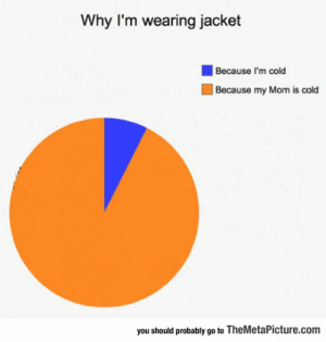 lolzandtrollz:  The Reason I'm Wearing A Jacket: Why I'm wearing jacket  Because I'm cold  Because my Mom is cold  you should probably go to TheMetaPicture.com lolzandtrollz:  The Reason I'm Wearing A Jacket