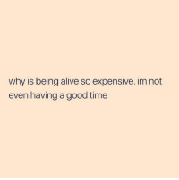Alive, Funny, and Tumblr: why is being alive so expensive. im not  even having a good time