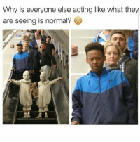 Funny, Ghost, and Spooky: Why is everyone else acting like what they  are seeing is normal?  02 Rah...man would have had to yardie kick dem two spooky ghost yutes off the escalator and ran back up the ting the wrong way 🏃🏾 👻👻 ByFelicia NotTodaySatan ComePartyOnaRealPage🎈