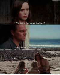 Inception, Memes, and Http: Why is it so important to dream?  In my dreams. We're still together. Inception (2010)  Download our app here: http://bit.ly/movquotes