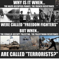 """Memes, French, and Freedom: WHY IS IT WHEN  JUDO  THE NAZISOCCUPIED FRANCE, THE FRENCH RESISTANCE  WERE CALLED """"FREEDOM FIGHTERS""""  BUT WHEN  THE ISRAELISOCCUPY PALESTINE, THE PALESTINIAN RESISTANCE  ARE CALLED TERRORISTS?"""""""