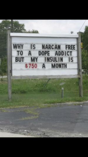 Dope, Omg, and Tumblr: WHY IS NARCAN FREE  TO A DOPE ADDICT  BUT MY INSULIN IS  $750 A MONTH omg-humor:If this isn't the right thread then I don't know what is.