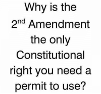 Memes, Good, and 2nd Amendment: Why is the  2nd Amendment  the only  Constitutional  right you need a  permit to use? Good question!