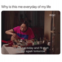 "Funny, Life, and Memes: Why is this me everyday of my life  ""Il.just eat today and l'll start  my diet agaiń tomorrow SarcasmOnly"