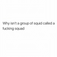 Fucking, Memes, and Squad: Why isn't a group of squid called a  fucking squad It's seriously so disappointing. It's like jetskis not being called BOATERCYCLES. (@haannaschmitz_ )