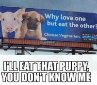 Animals, Love, and Vegetarian: Why love one  but eat the other?  Choose Vegetarian.  MERCY FOR  ANIMALS  LAMAR  YOU DONT KNOW ME