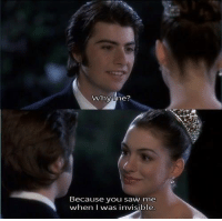 The Princess Diaries (2001): Why me  Because you saw me  when I was invisible The Princess Diaries (2001)