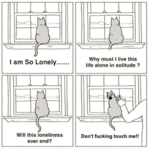 Meirl: Why must I live this  life alone in solitude ?  I am So Lonely....  Will this loneliness  ever end?  Don't fucking touch me!! Meirl