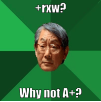 High Expectations Asian Father: Why not A+? High Expectations Asian Father