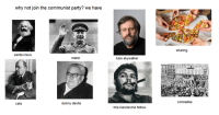 Cats, Luke Skywalker, and Party: why not join the communist party? we have  santa claus  mario  danny devito  cats  luke skywalker  this handsome fellow  sharing  comrades