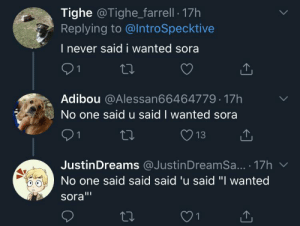 Why not Sora: Why not Sora