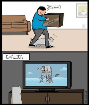 Oatmeal, Why, and Now: Why now?  FRAGILE  purr  purr  purr  EARLIER  The Oatmeal Rebel Scum