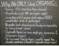 For these and many other reasons:: Why ONLY Se  ORGANIC  Roundup 125x more toxic than claimed!  pesticides in just ONE non-organic a  Ulcing takes a lot o  produce whoh makesa HIGHIY  concentrated drink of pesticides!  Monsantos bestselling herbicide Koundup is responsi  for fueling breast cancerl  pression &  up) Can Cause Weight gal  Alzheimers disease  The Environment Robchon Agency recently raised the  allowable Concentrallon d MonsantOS  Glyphoeab onfood crops For these and many other reasons: