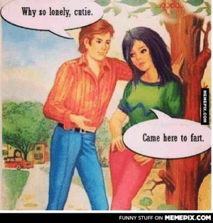Why so lonely, cutie?omg-humor.tumblr.com: Why so lonely, cutie.  Came here to fart.  FUNNY STUFF ON MEMEPIX.COM  МЕМЕРIХ.Сом Why so lonely, cutie?omg-humor.tumblr.com