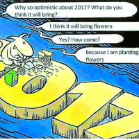 Memes, Flower, and Flowers: Why so optimistic about 2017? What do you  think it will bring?  think it will bring flowers  Yes? How come?  Because am planting  flowers You reap what you sow