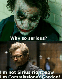 I can't even...brb, dying.  #GothamCityMemes -Ravager: Why so serious?  'm not Sirius righnow!  I'm Commissioner Gordon! I can't even...brb, dying.  #GothamCityMemes -Ravager