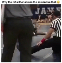 - DM This To A Friend😂 Follow 👉 @stonerjoke: Why the ref slither across the screen like that  JA - DM This To A Friend😂 Follow 👉 @stonerjoke