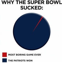 Funny, Patriotic, and Smh: WHY THE SUPER BOWL  SUCKED:  MOST BORING GAME EVER  THE PATRIOTS WON Smh
